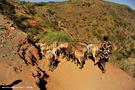 14-el-sod-borana-salt-cratrer-vulcano-ethiopia